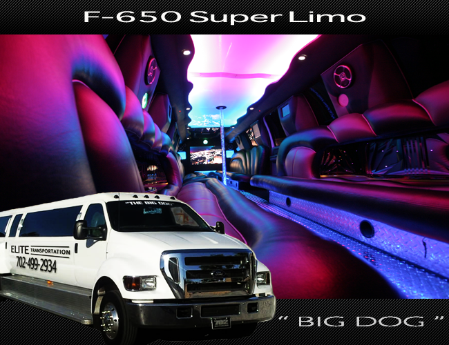 BIG-DOG-f-650-limo